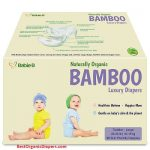 BabieB Diapers Review 2019